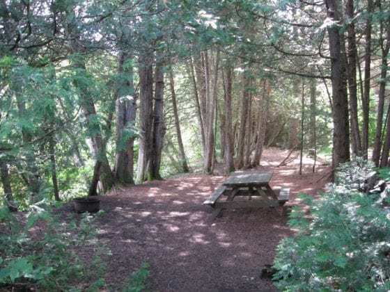 gay hookups woods