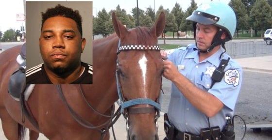 horse slap chicago pride
