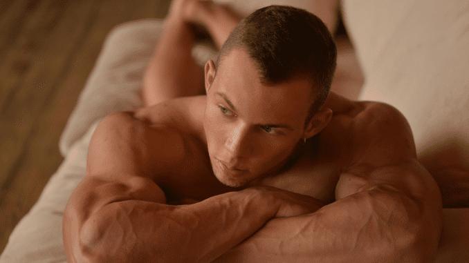 muscular vascular body