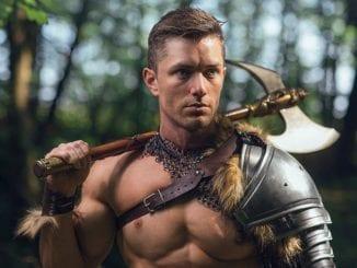 gay viking