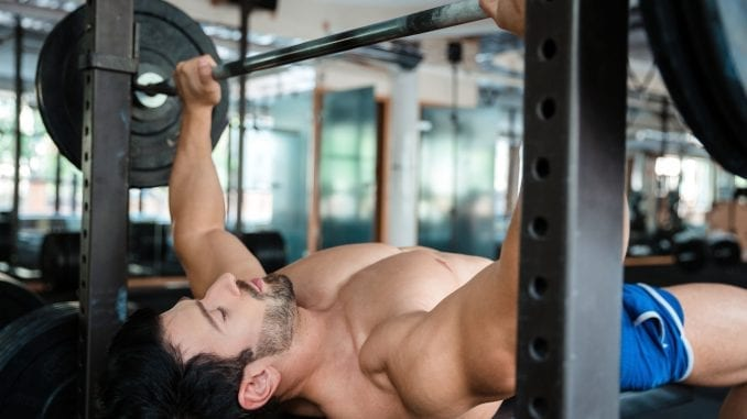 male bodybuilder gym bench press
